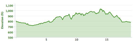 A pretty good climb for this run.