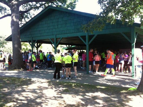 Gathering around the pavilion
