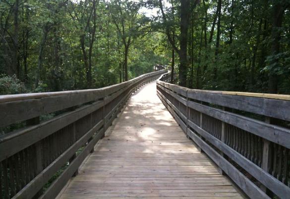 This boardwalk was really pretty.
