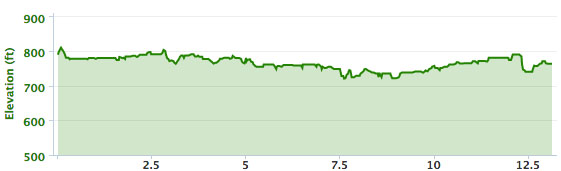 The elevation chart for the race
