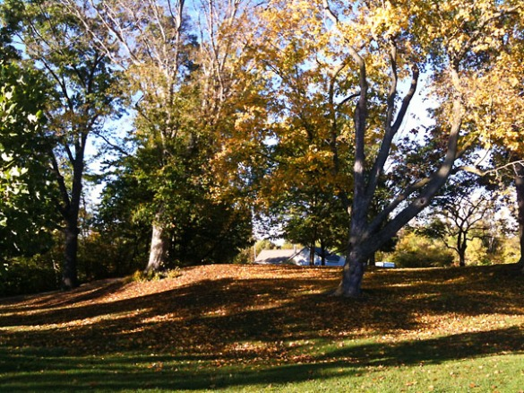 Rochester Municipal Park
