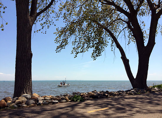 One of my favorite pictures from Lake St. Clair Metropark.