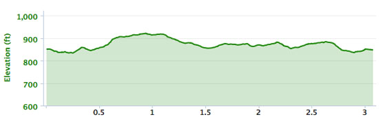 The elevation according to my Garmin.