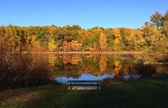 2014-10-11 - wild life marathon trail1