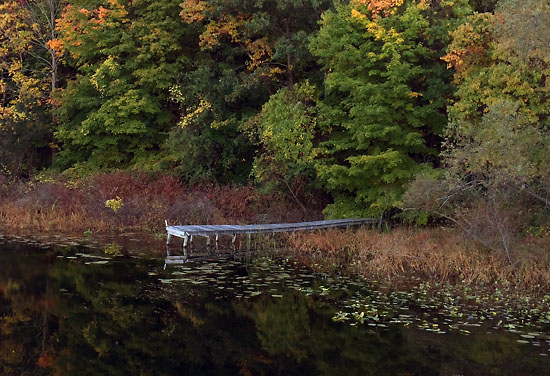 2014-10-11 - wild life marathon trail2