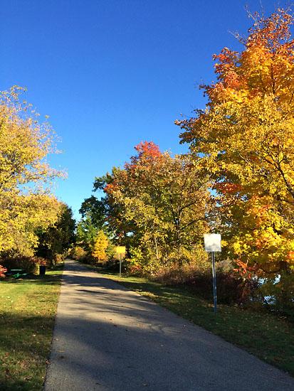 2014-10-11 - wild life marathon trail6