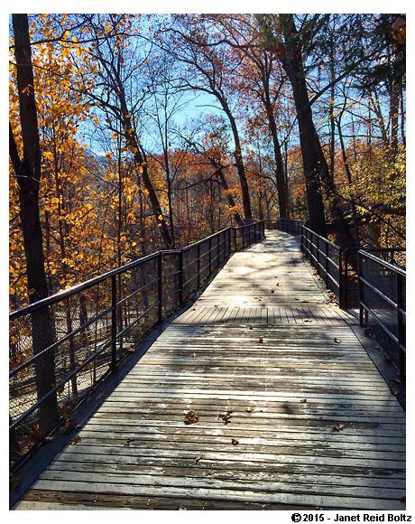 2015-11-08 - cleveland zoo6.jpg