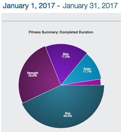 2017-02-12-january-workouts