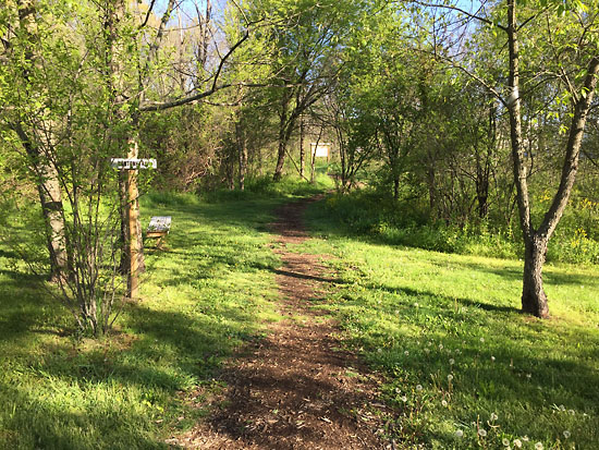 2017-05-13 - trails.jpg